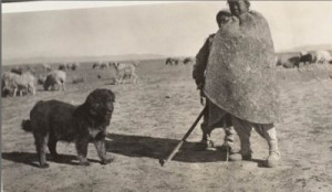Gansu, 1910