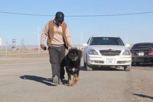 Omno Gobi province
